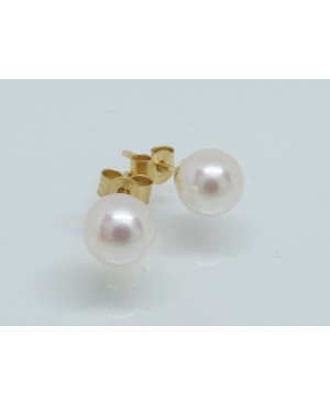 9ct Yellow Gold & Cultured Freshwater Pearl Stud Earrings