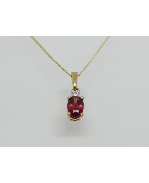9ct Yellow Gold Garnet &...