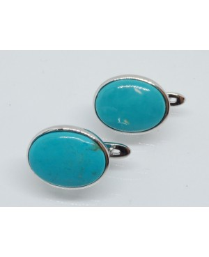 Silver & Turquoise Stud...