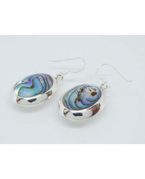 Silver & Abalone Drop Earrings